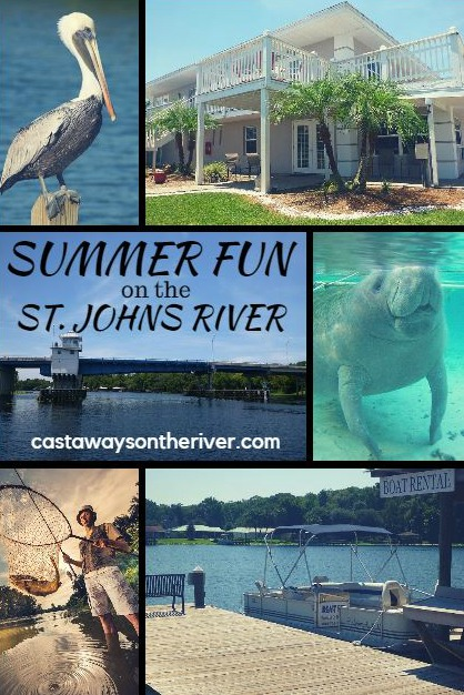summer fun Pinterest pin