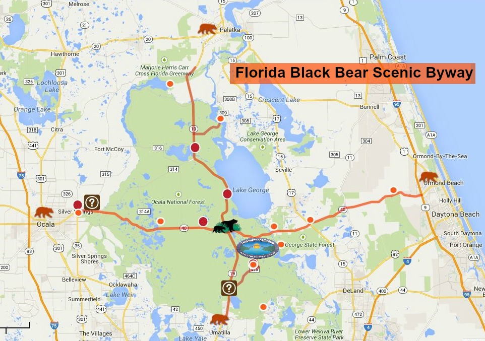 A Glimpse Of The Natural Side Floridas Black Bear Scenic Byway - Mapa florida