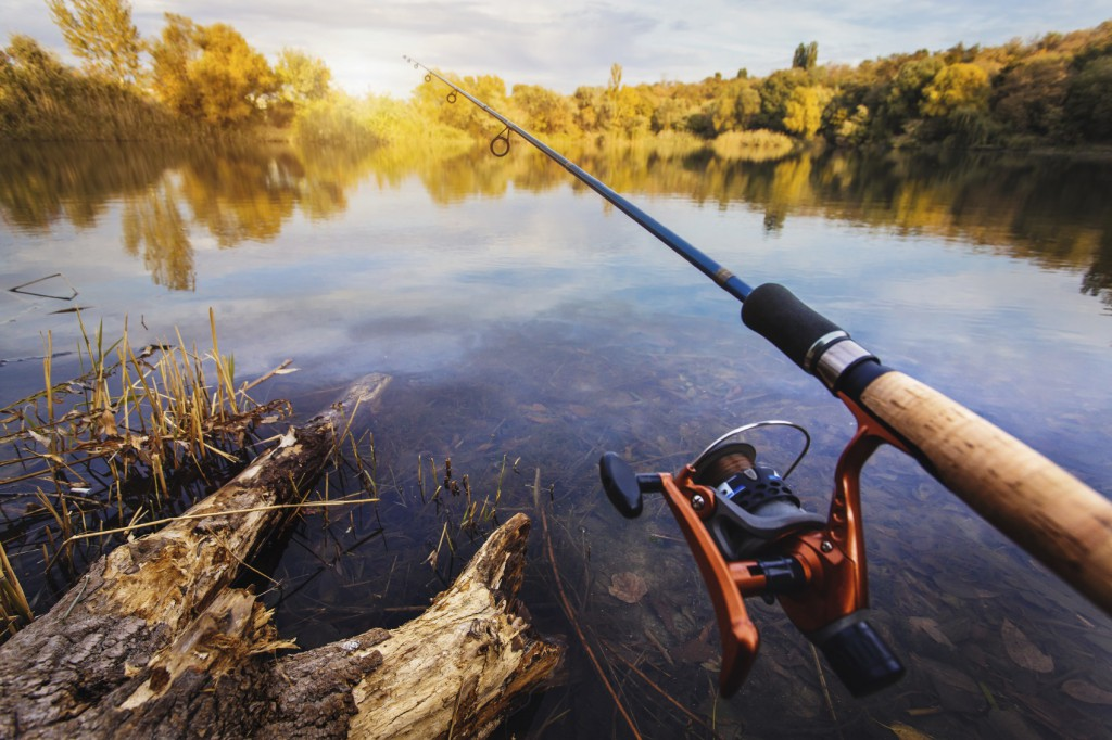 Freshwater fishing archives castaways on the river for Buy florida fishing license online