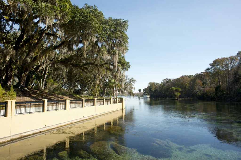 6 Hidden Gems On The St Johns River