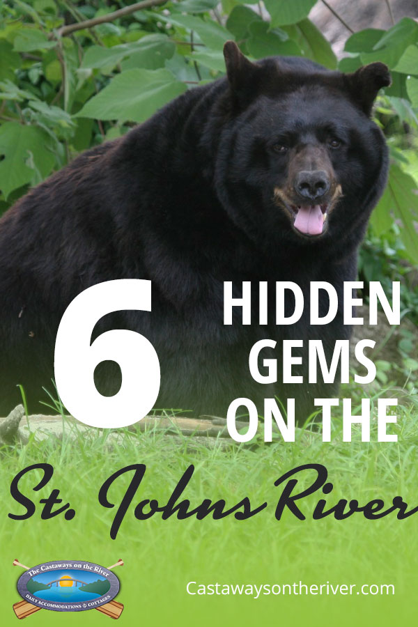 hidden gems pinterest pin