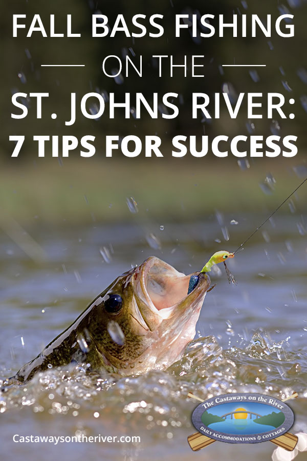 Fall Bass Fishing on the St. Johns River: 7 Tips for Success