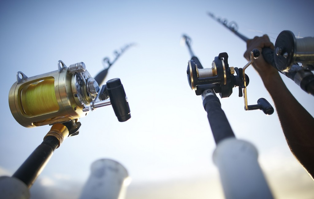 company fishing trip rods and reels