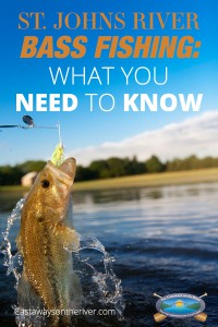 st johns river bass fishing