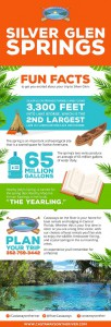 silver glen springs infographic
