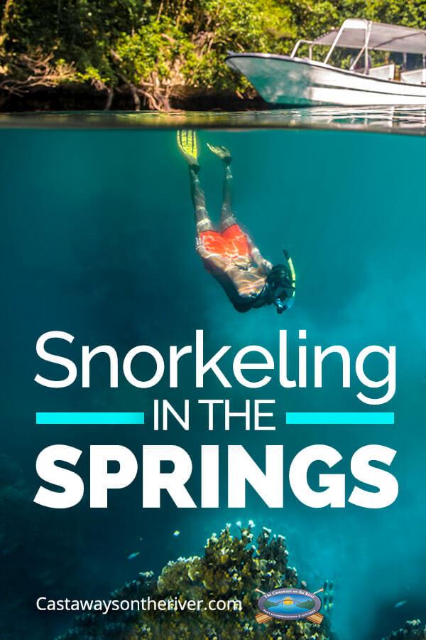 snorkeling-springs-pin